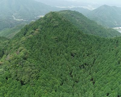 税 森林 使途 譲与 環境